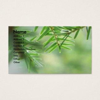 Evergreen Business Card