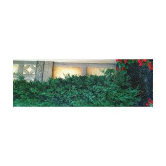 Evergreen by JanLynn Canvas Print
