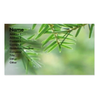 Evergreen Double-Sided Standard Business Cards (Pack Of 100)