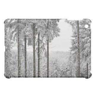 Evergreen forest in winter iPad mini cover