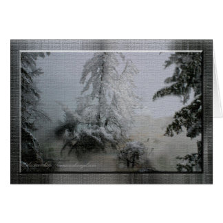 Evergreen Holiday Greeting Card