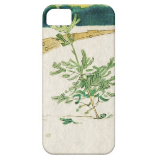Evergreen in Snow iPhone SE/5/5s Case