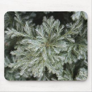 Evergreen Mousepad