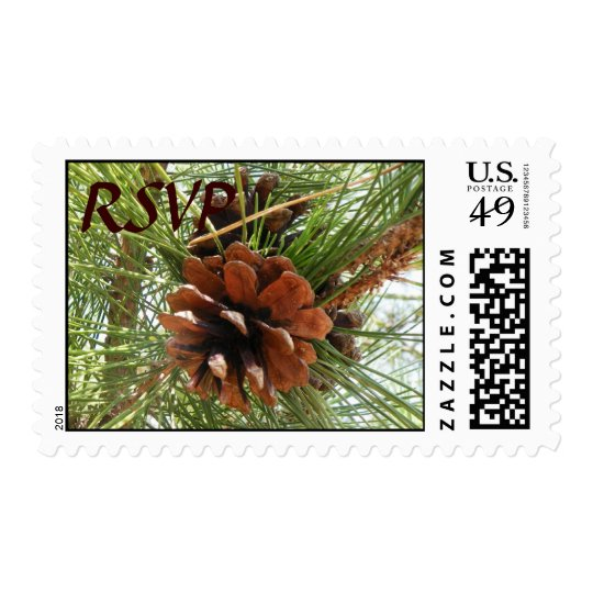 Evergreen Pine Cone RSVP Postage Stamps