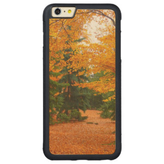Evergreen Pines and Autumn Trees Carved® Maple iPhone 6 Plus Bumper Case