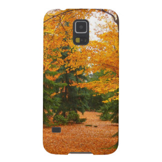 Evergreen Pines and Autumn Trees Galaxy S5 Cover