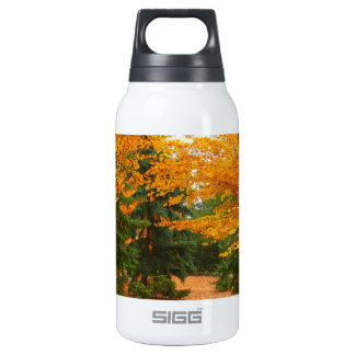 Evergreen Pines and Autumn Trees Insulated Water Bottle