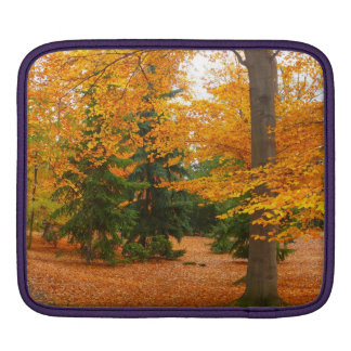 Evergreen Pines and Autumn Trees Sleeves For iPads