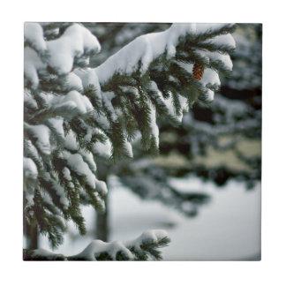 Evergreen Snow Tile