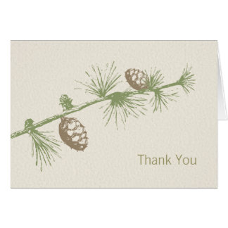 Evergreen Thank You Cards