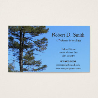 evergreen tree in blue sky science profile cards