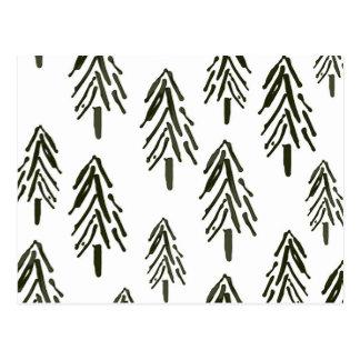 Evergreen trees postcard