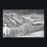 """Evergreens and Aspen trees in a snow storm Canvas Print<br><div class=""""desc"""">Howie Garber / DanitaDelimont.com 