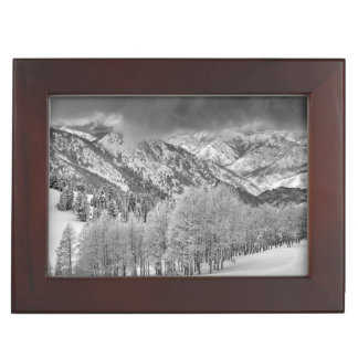 Evergreens and Aspen trees in a snow storm Keepsake Box