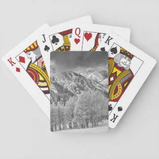 Evergreens and Aspen trees in a snow storm Poker Deck