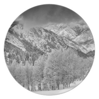 Evergreens and Aspen trees in a snow storm Dinner Plate