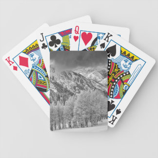 Evergreens and Aspen trees in a snow storm Deck Of Cards
