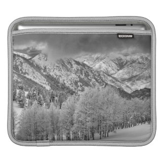 Evergreens and Aspen trees in a snow storm Sleeve For iPads