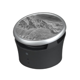 Evergreens and Aspen trees in a snow storm Speaker