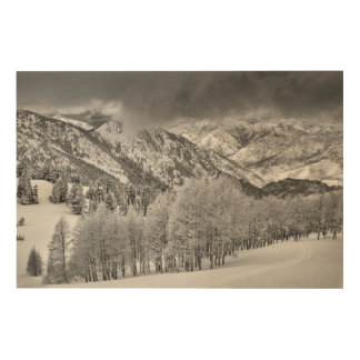 Evergreens and Aspen trees in a snow storm Wood Print