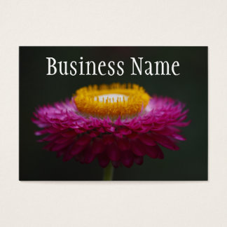 Everlasting Daisy  Business Card