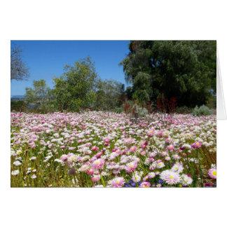 Everlasting Flowers Card