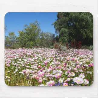 Everlasting Flowers Mouse Pad