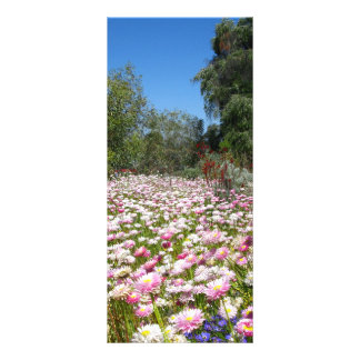 Everlasting Flowers Personalized Rack Card