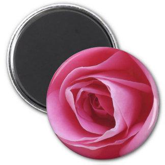 Everlasting Pink Magnet Refrigerator Magnets