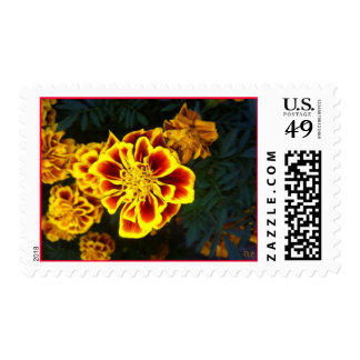 Every Day Flowers Postage