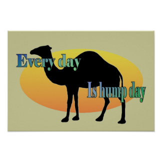 Every Day is Hump Day Poster