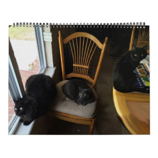 Every Day Is Saturday Custom Cat Calendar