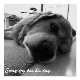 """Every Dog Has His Day"" Poster"