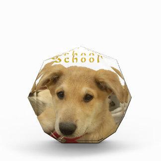 Every Dog Has iTS  DAY  Hakuna Matata Happy days a Award