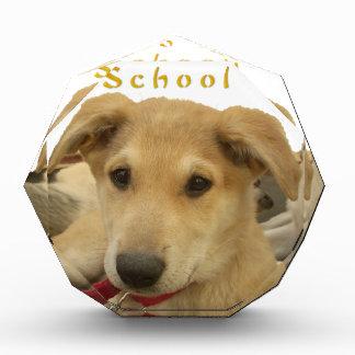 Every Dog Has iTS  DAY  Hakuna Matata Happy days a Acrylic Award