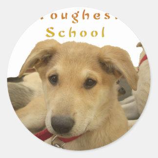 Every Dog Has iTS  DAY  Hakuna Matata Happy days a Classic Round Sticker
