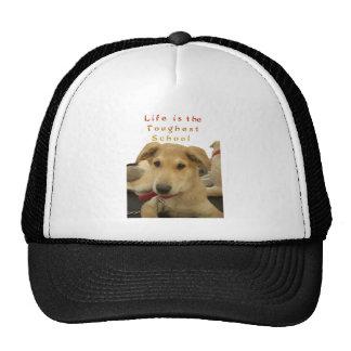 Every Dog Has iTS  DAY  Hakuna Matata Happy days a Trucker Hat