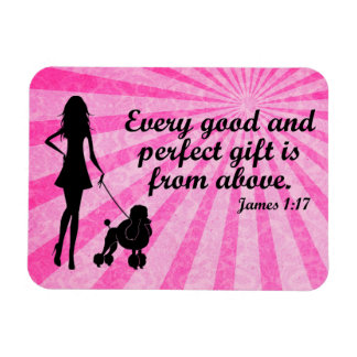 Every Good and Perfect Gift James 1:17 Christian Rectangular Photo Magnet