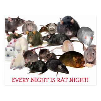 Every Night Is Rat Night Rat Lover's Postcard