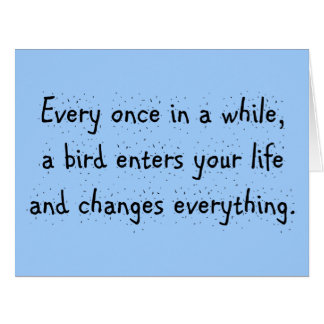 Every Once In A While, A Bird Enters Your Life … Card
