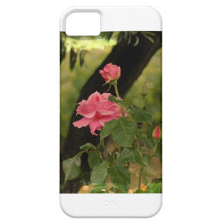 """Every Rose Has Its Thorn"" iPhone SE/5/5s Case"