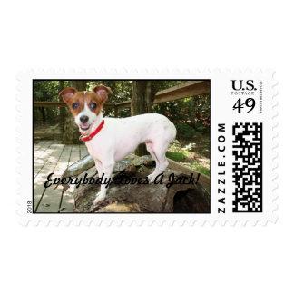 Everybody Loves A Jack! Postage Stamp