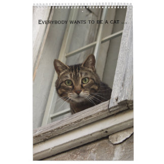 Everybody wants to be a cat. For cat lovers Calendar