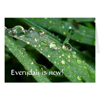 Everyday is new! card