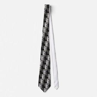 everyday usage neck tie