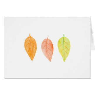 everyday watercolor leaves tree note cards