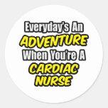 Everyday's An Adventure .. Cardiac Nurse Stickers