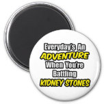 Everyday's An Adventure...Kidney Stones 2 Inch Round Magnet