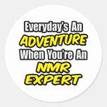 Everyday's An Adventure...NMR Expert Round Stickers