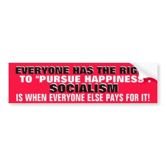 EVERYONE HAS THE RIGHT TO PURSUE HAPPINESS. bumpersticker
